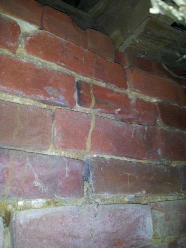 Termite Shelter Tubes